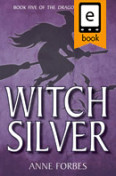 Witch Silver jacket cover