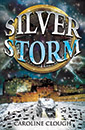 Silver Storm jacket cover